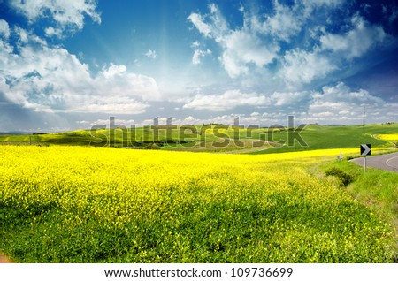 Countryside Landscape with Fields, Tuscany - stock photo