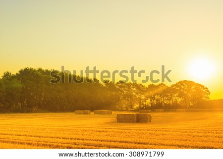 Countryside landscape with straw bales in the summer - stock photo