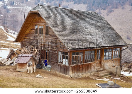 Countryside landscape with traditional wooden house guarded by carpathian shepherd dog - stock photo