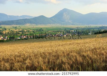 Countryside near Golpazari, Bilecik, Turkey - stock photo