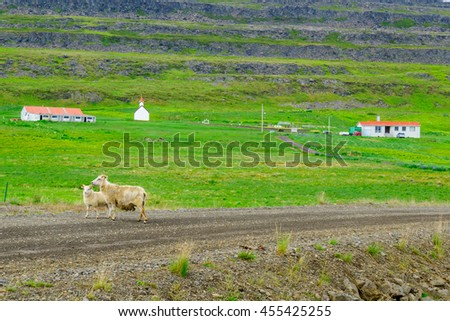 Countryside near the Vatnsfjordur fjord, in the west fjords region, Iceland - stock photo