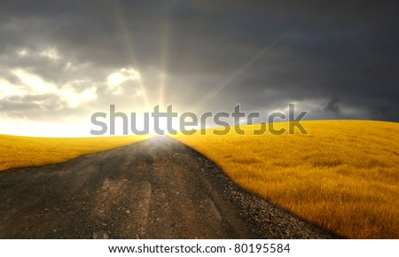Countryside path between grain fields towards the sunset - stock photo