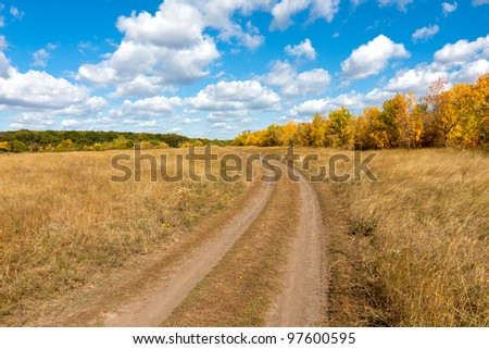 Countryside road in nice autumn day
