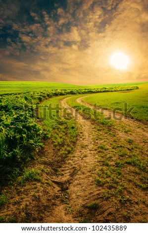 countryside road in summer morning - stock photo