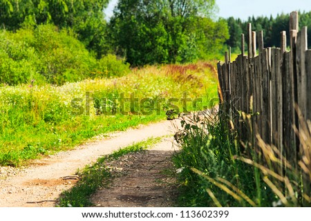 countryside road near old wooden fence at summer day - stock photo