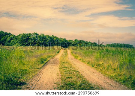 Countryside road on a idyllic meadow - stock photo