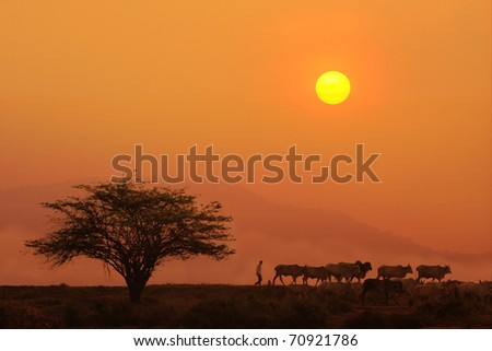 countryside's life in evening, Thailand - stock photo