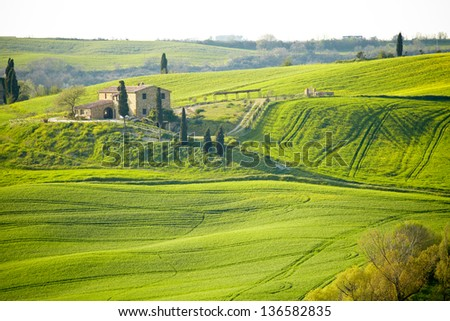 Countryside, San Quirico d���´Orcia, Tuscany, Italy