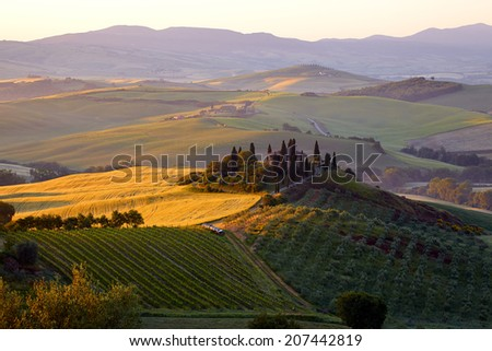 Countryside, San Quirico d`Orcia , Tuscany, Italy  - stock photo