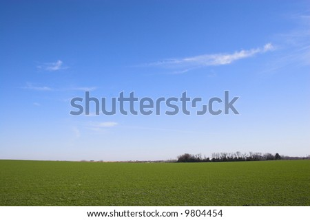 Countryside surrounded by colorful fields and meadows