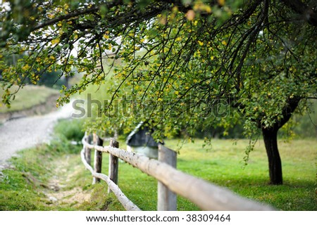 Countryside view: garden with a fence and a tree - stock photo