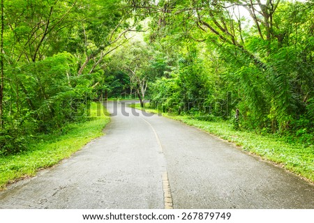 countrysite road - stock photo