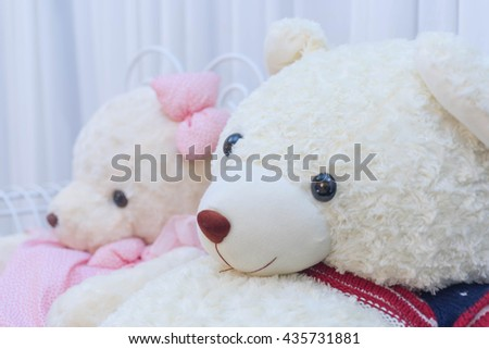 Couple bear dolls