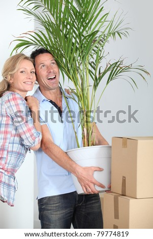 Couple carrying plant - stock photo