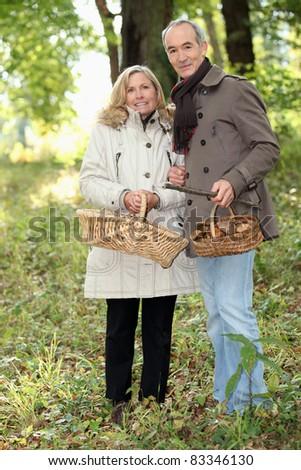 Couple collecting wild mushrooms - stock photo
