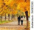 couple in autumn park - stock photo