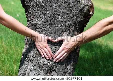 Couple is putting their hands on tree in a shape of heart. - stock photo