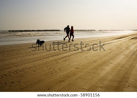 Couple jogging with their dog at beach at sunset, unrecognizable people - stock photo