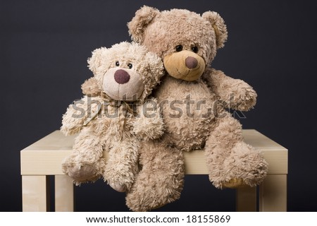 Couple of bears