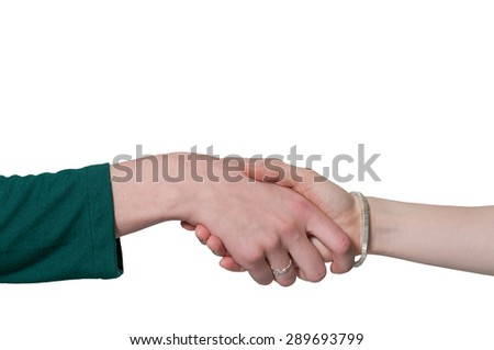 Couple of business women shaking hands during a business deal - stock photo