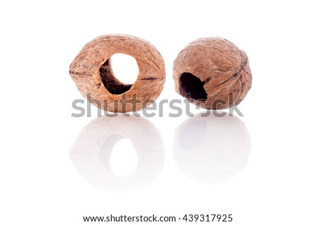 couple of eaten walnuts by a squirrel - stock photo