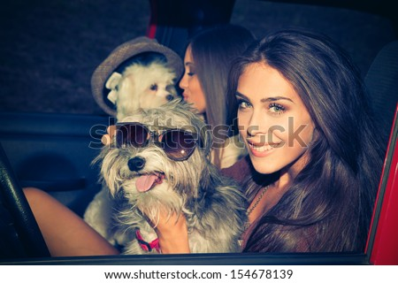 couple of girls in car take fun with their little dogs - stock photo