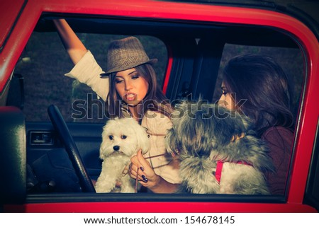 couple of girls in car take fun with their little dogs