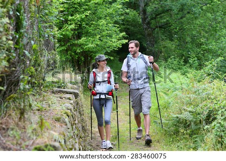 Couple of hikers walking in forest track