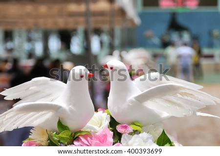 Couple of pigeon is a decoration in the wedding