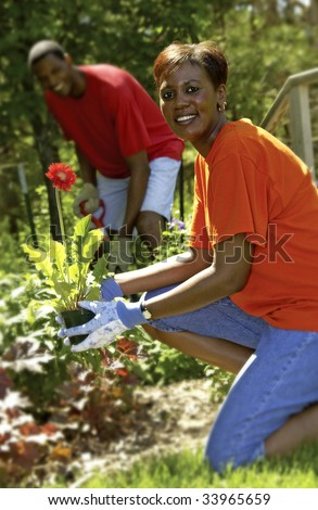 Couple planting flowers - stock photo