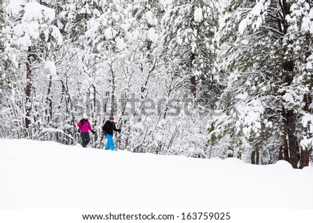 Couple Snowshoeing in a Winter Wonderland - stock photo