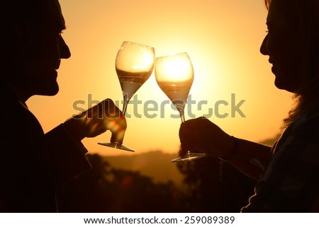 Couple toasting at sunset - stock photo