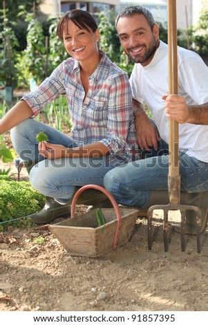 couple working in a kitchen garden - stock photo