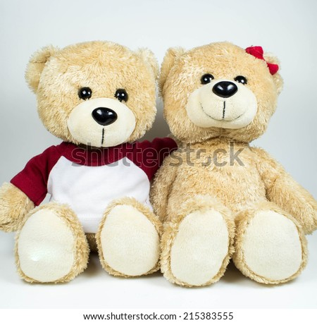 Couples light brown teddy bear on white background - stock photo