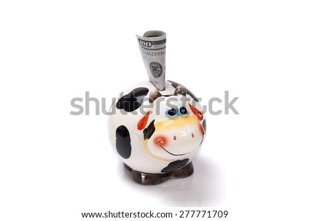 cow a moneybox with the note dollar on a white background - stock photo