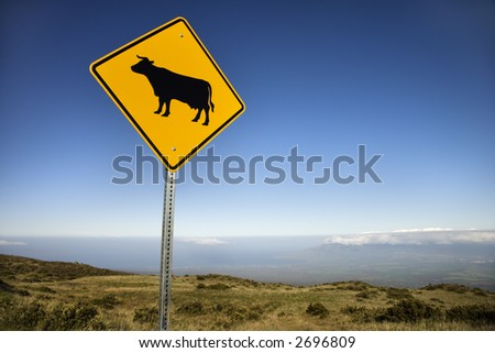 Cow crossing road sign in Haleakala National Park, Maui, Hawaii.