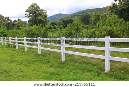 cow horse fence - stock photo