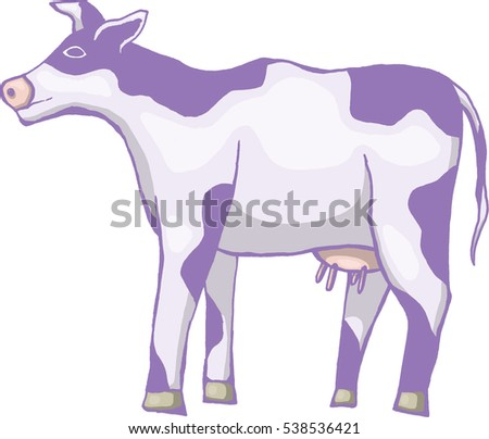 Cow (isolated on a white background)