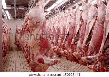 Slaughter house images