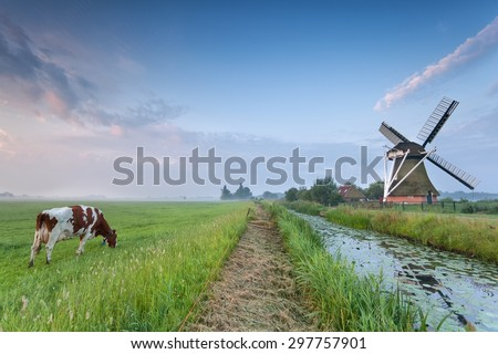 cow on pasture and windmill by river in morning - stock photo