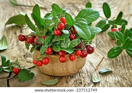 Cowberries in wooden bowl on rustic surface - stock photo