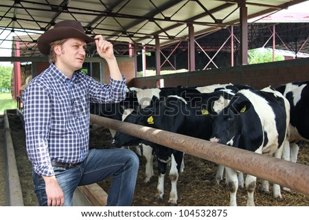 Cowboy and Cows - stock photo