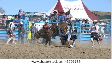 Cowboy Bites the Dust - stock photo
