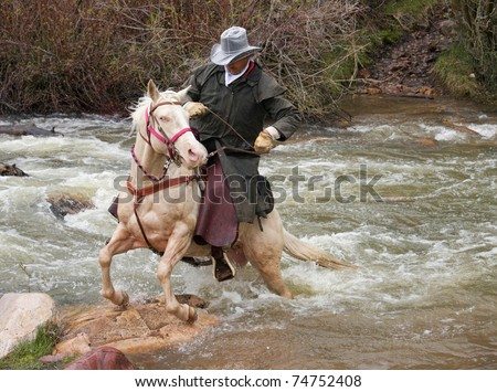 River-horse Stock Images, Royalty-Free Images & Vectors