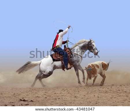 Cowboy Roping a Steer isolated with clipping path - stock photo