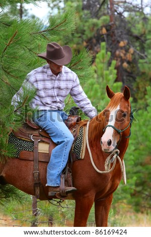 Cowboy working his horse in the field - stock photo