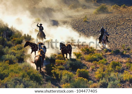 Cowboys chasing wilding horses. roping and riding, with dust flying everywhere