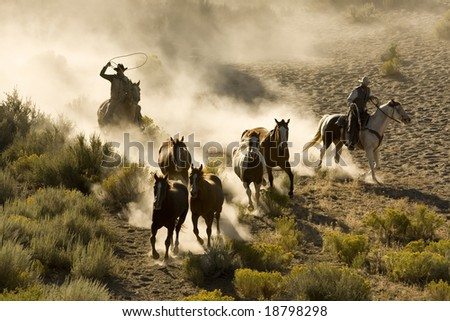 Cowboys out chasing wilding horses in early morning light