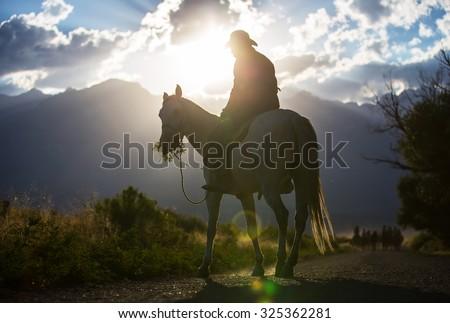 Cowboys riding a horse over the mountains  - stock photo