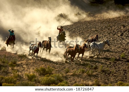 Cowgirl and Cowboy galloping and roping wild horses through the desert - stock photo